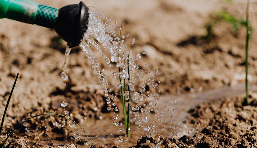 5 Tips Beli Tanah Murah Anti Tipu Tipu yang Perlu Dipahami | KlikCair