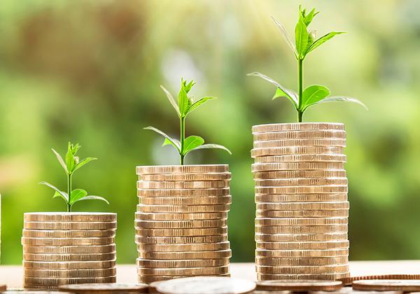 Investasi untuk passive income