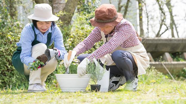 Jangan Khawatir, Begini Cara Siapkan Dana Pensiun di Usia yang Tidak Muda!