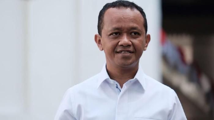 Presiden Bentuk Kementerian Investasi, Apa Saja Tugasnya?